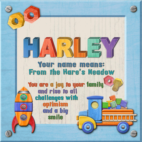 Tidybirds name meanings name definition plaque for kids HARLEY Nickery Nook