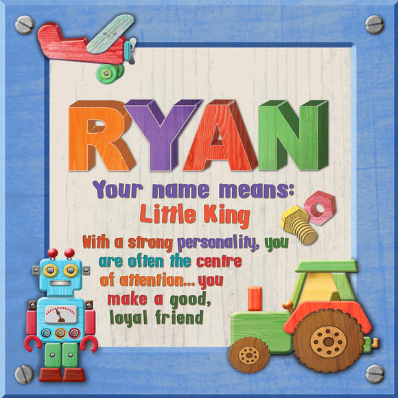 Tidybirds name meanings name definition plaque for kids RYAN  Nickery Nook