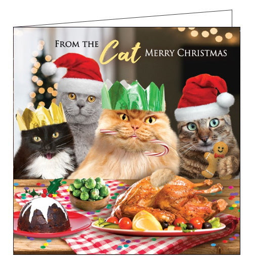 This adorable Christmas card from the cat features a photograph of four cats in festive hats looking excitedly at a table laden with christmas dinner. The text on the front of the card reads