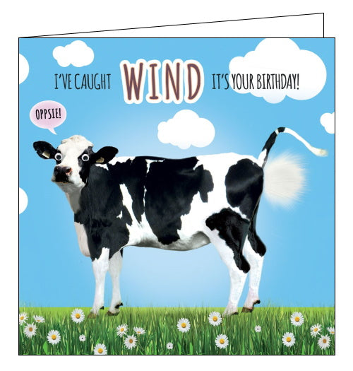 Tracks caught wind its your birthday cow fart funny birthday card