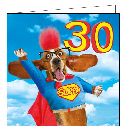 Tracks funny 30th birthday card super dog