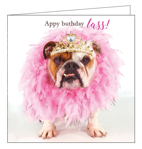 Tracks northern appy buthday lass dog birthday card