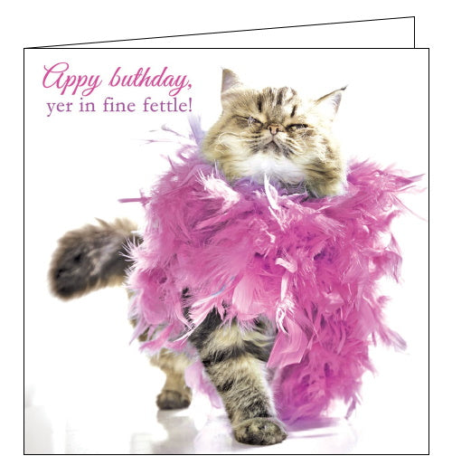 Tracks northern humour fine fettle cat birthday card