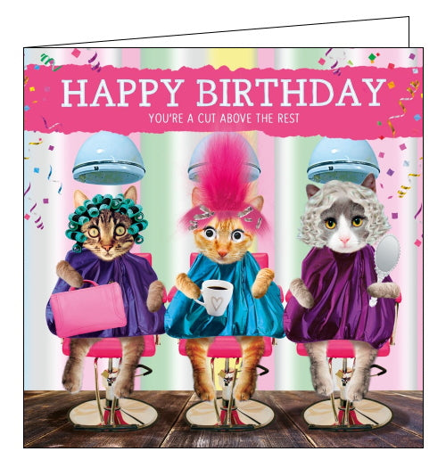 This quirky Birthday card is perfect for hairdressers or anyone who loves to look their best. This birthday card features a scene of three cats in hairdryer chairs at the salon. The cat in the middle chair has googly eyes and a tuft of pink fluffy hair. Text on the front of the card reads