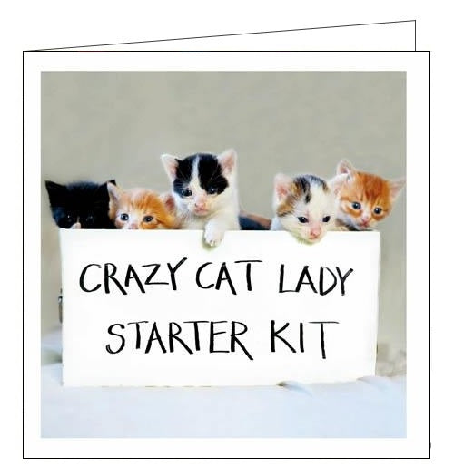 Woodmansterne Cattitude funny crazy cat lady starter kit cats blank card Nickery Nook