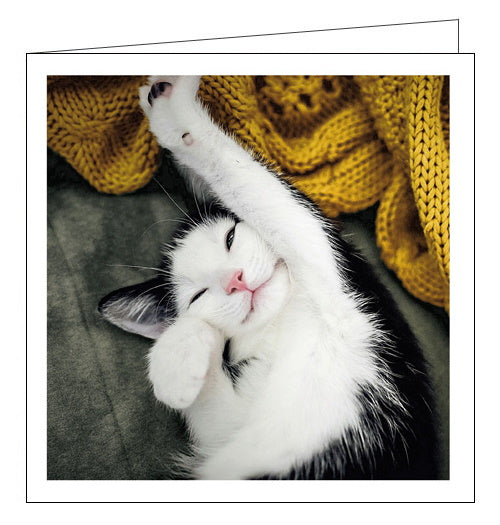 Woodmansterne Cattitude sleepy cat blank card