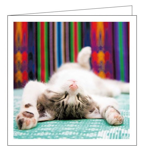 Woodmansterne Cattitude tough day cats blank card Nickery Nook