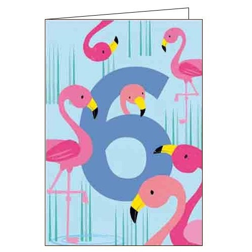 Woodmansterne Flamingos Happy 6th Birthday card Nickery Nook