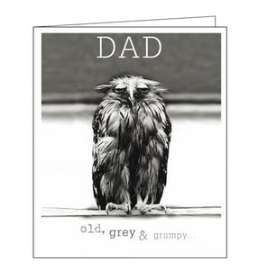 Woodmansterne Framed Dad Wise Owl Happy Birthday card Nickery Nook