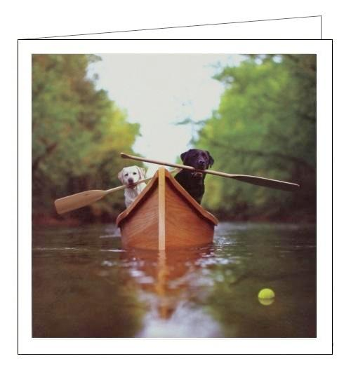 Woodmansterne Loose Leashes dogs adventurers blank card Nickery Nook