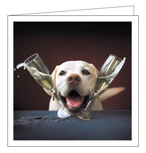 Woodmansterne Loose Leashes labrador and champagne blank card