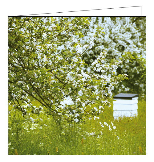 Woodmansterne National Trust orchard at sissinghurst castle blank card Nickery Nook