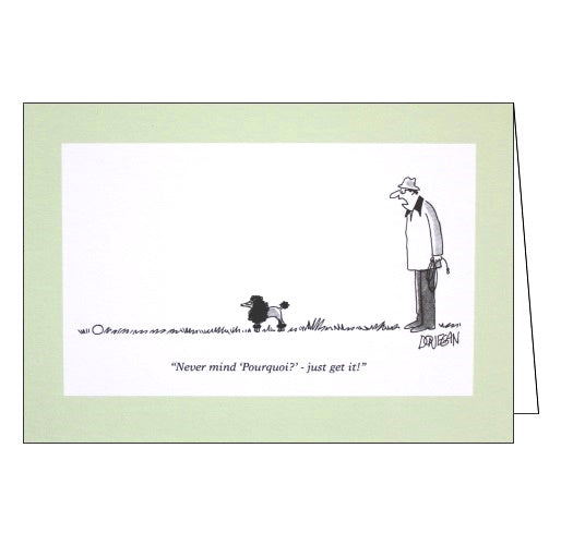 Woodmansterne Punch donegan Nevermind Pourquoi blank humour card Nickery Nook