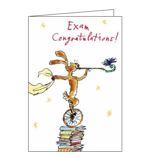 Woodmansterne Quentin Blake Congratulations Exam Congratulations passing your exams Nickery Nook new