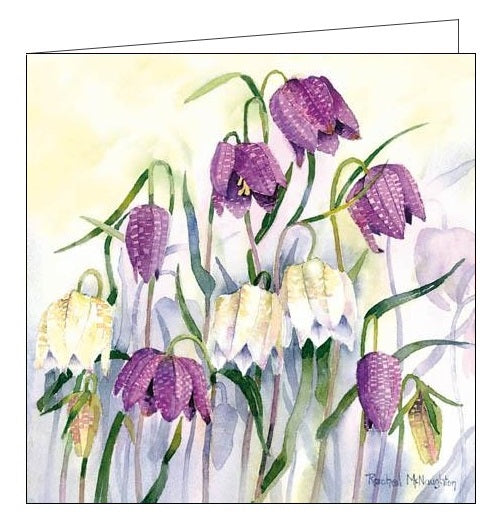 Woodmansterne Rachel McNaughton florals flowers sleepy snakeheads blank card Nickery Nook