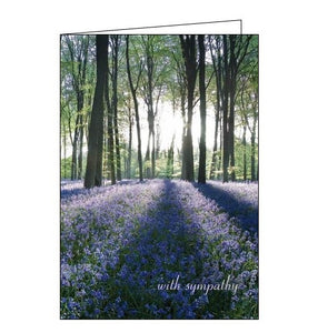 Woodmansterne With Sympathy Shining Light sympathy card Nickery Nook