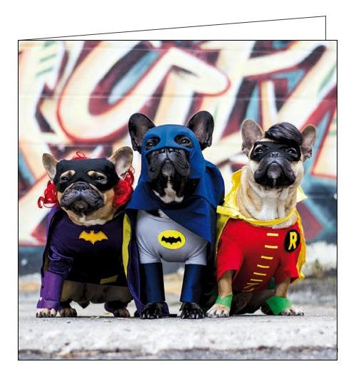Woodmansterne framed superhero dogs in costume this looks like a job for Birthday card Nickery Nook