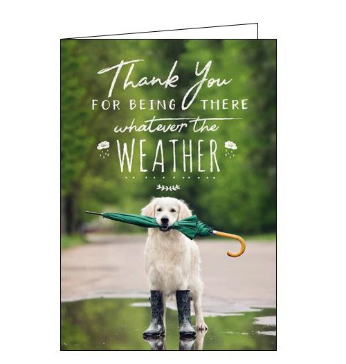 Woodmansterne loose leashes dog thank you card Nickery Nook