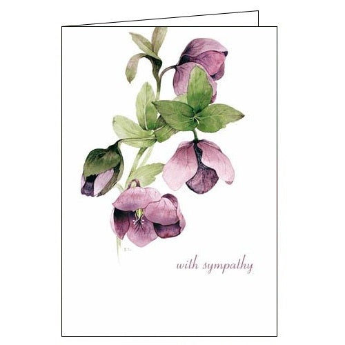 Woodmansterne sarah creswell lilac hellebore with sympathy card Nickery Nook