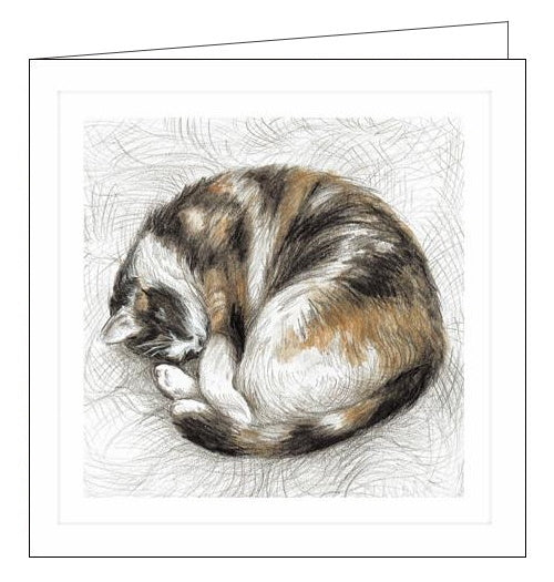 Woodmansterne sleeping cat teresa kirk Millbank blank card Nickery Nook