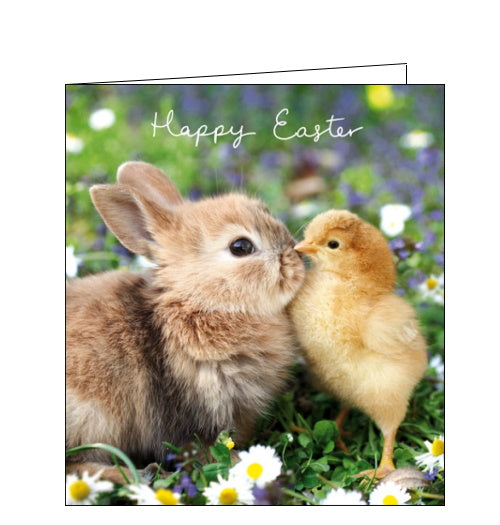 Woodmansterne chick and bunny easter card