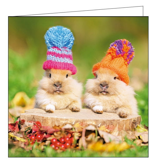 Woodmansterne cute rabbits in hats blank card