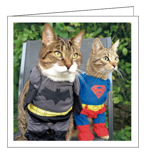 Woodmansterne framed cat superheroes blank card