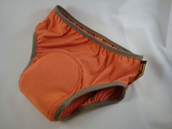 Bamboo Toddler Training Underwear with Waterproof Pad - Sienna 1632