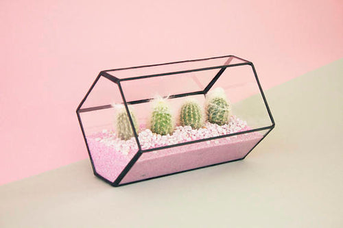 Indoor planter including terrarium kit - Geometric