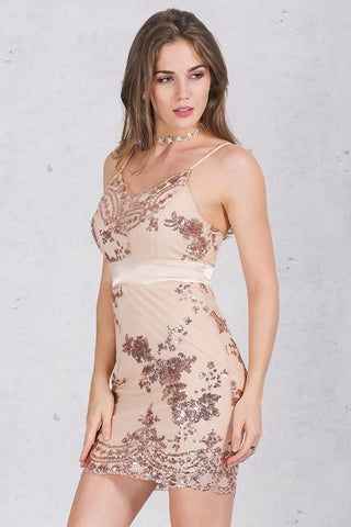 Sandra Embroidered Sequin Mini Dress