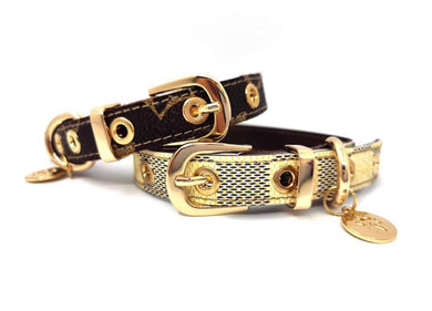 Chewy Vuitton Leash & Collar Set - Supreme Paw Supply