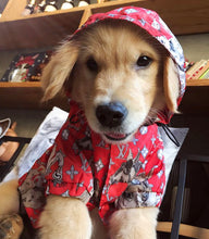 Load image into Gallery viewer, LV Dog  Rain Jacket - Supreme Paw Supply