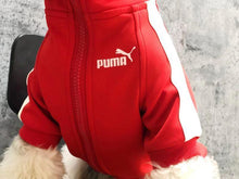 Load image into Gallery viewer, Puma Dog Track Jacket - Supreme Paw Supply