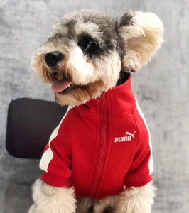 Puma Dog Track Jacket - Supreme Paw Supply
