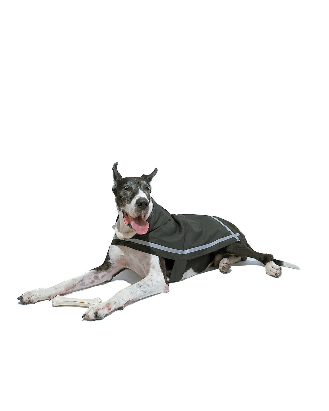 London Fog All-Weather Reflective Dog Raincoat - Supreme Paw Supply