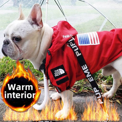 Insulated Dog Face Windbreaker - Red - Supreme Paw Supply