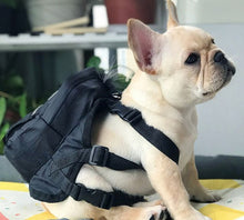 Load image into Gallery viewer, Puppy Eyez Dog Backpack - Supreme Paw Supply