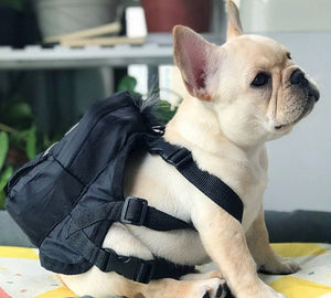 Puppy Eyez Dog Backpack - Supreme Paw Supply
