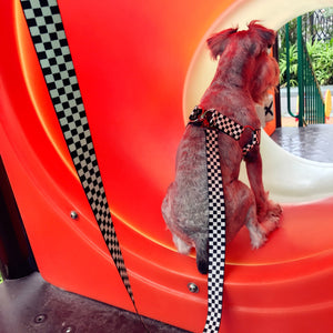 Checkerboard Dog Leash Set - Supreme Paw Supply