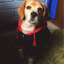 Load image into Gallery viewer, Westminister Dog Hoodie - Supreme Paw Supply