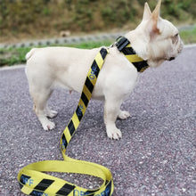Load image into Gallery viewer, Woof-White Striped Collar & Leash - Supreme Paw Supply