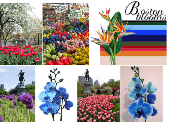 Boston Blooms Collection