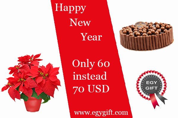 New Year  chocolate cake and Poinsettia Combo