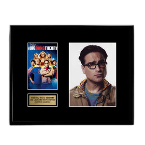 The Big Bang Theory Leonard Hofstadter