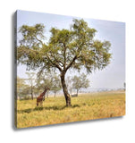 Gallery Wrapped Canvas, African Landscape With A Acacia Tree - Mélange Paris