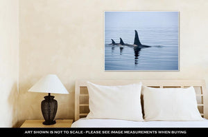 Gallery Wrapped Canvas, Three Killer Whales With Huge Dorsal Fins At Vancouver Island - melangebyojo