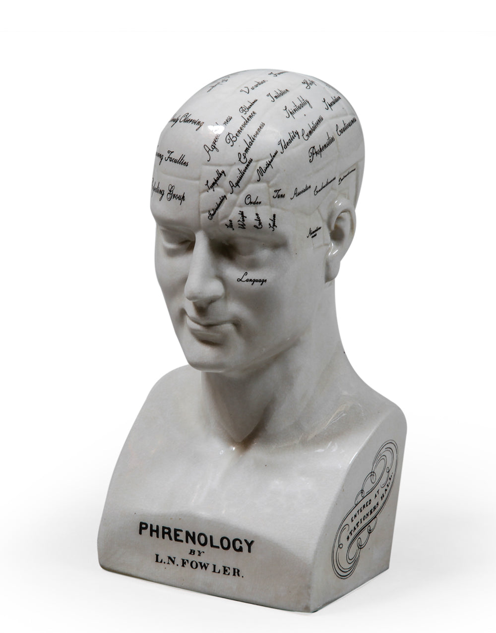 Large Ceramic Phrenology Head