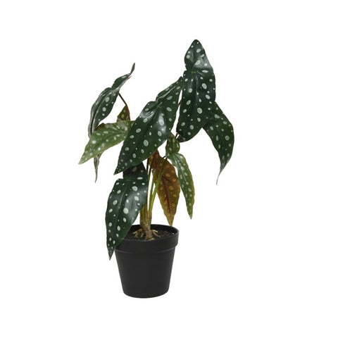 Artificial Philo Leaf Plant in Pot