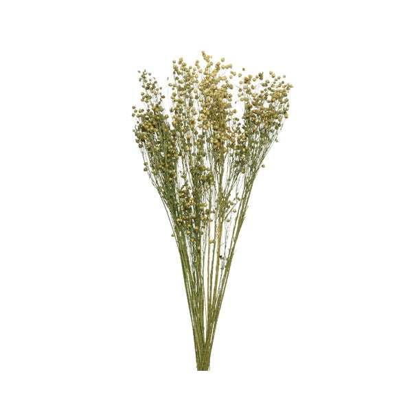 Natural Dutch Dried Bundle of Flowers