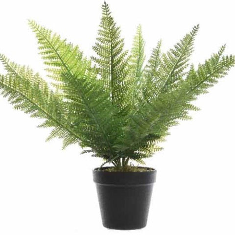 Extra Large Artificial Fern Plant